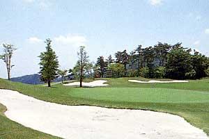 足利城ゴルフ倶楽部のグリーン
